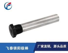 东莞飞泰镁阳极棒-通用电热水器阳极镁棒规格齐全可定制